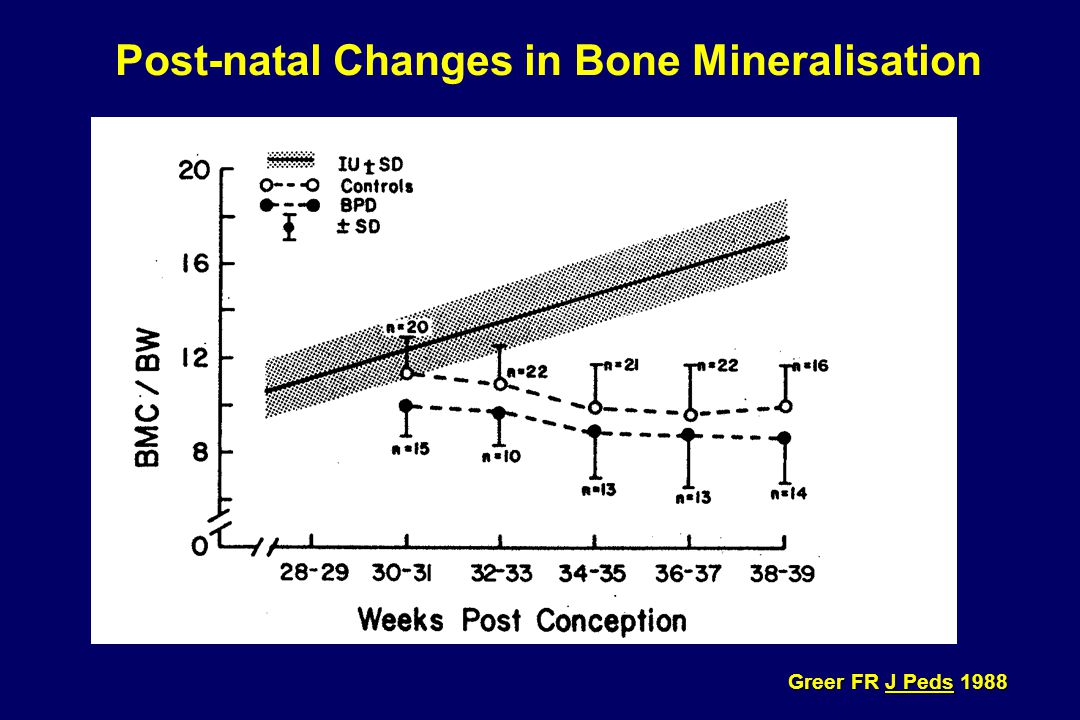 Post-natal Changes in Bone Mineralisation