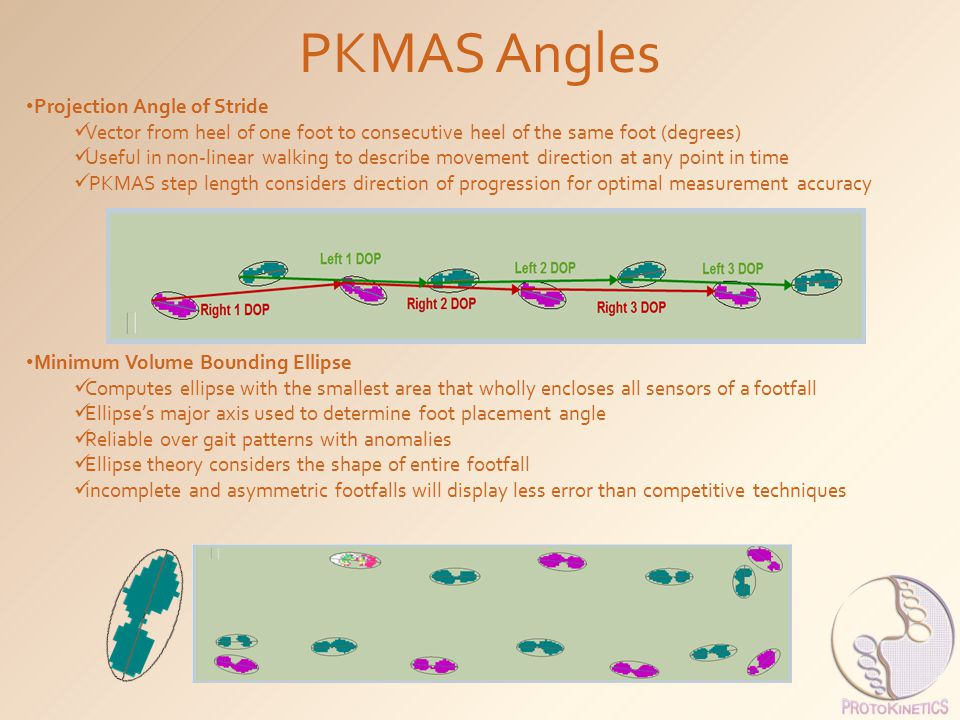 PKMAS Angles Projection Angle of Stride
