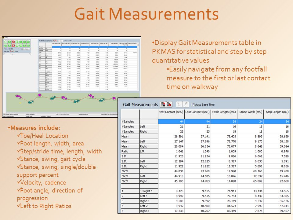 Gait Measurements Display Gait Measurements table in PKMAS for statistical and step by step quantitative values.