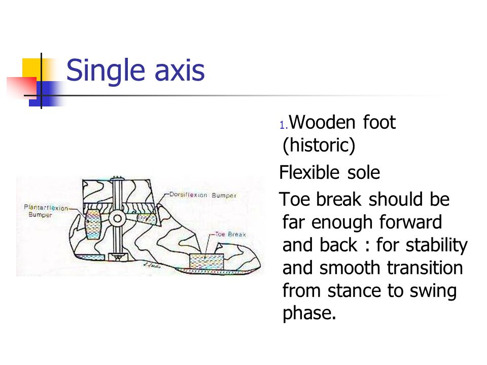 Single axis Wooden foot (historic) Flexible sole