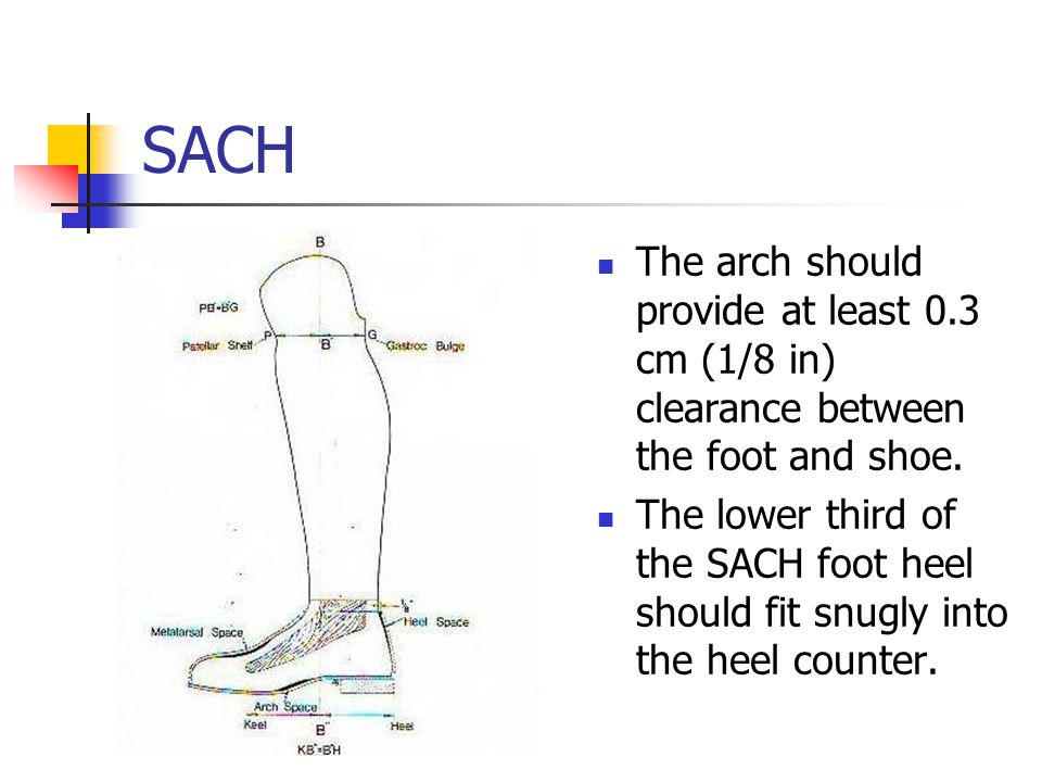 SACH The arch should provide at least 0.3 cm (1/8 in) clearance between the foot and shoe.