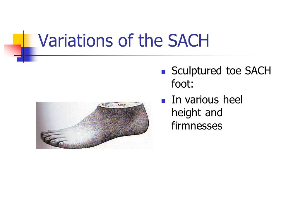 Variations of the SACH Sculptured toe SACH foot:
