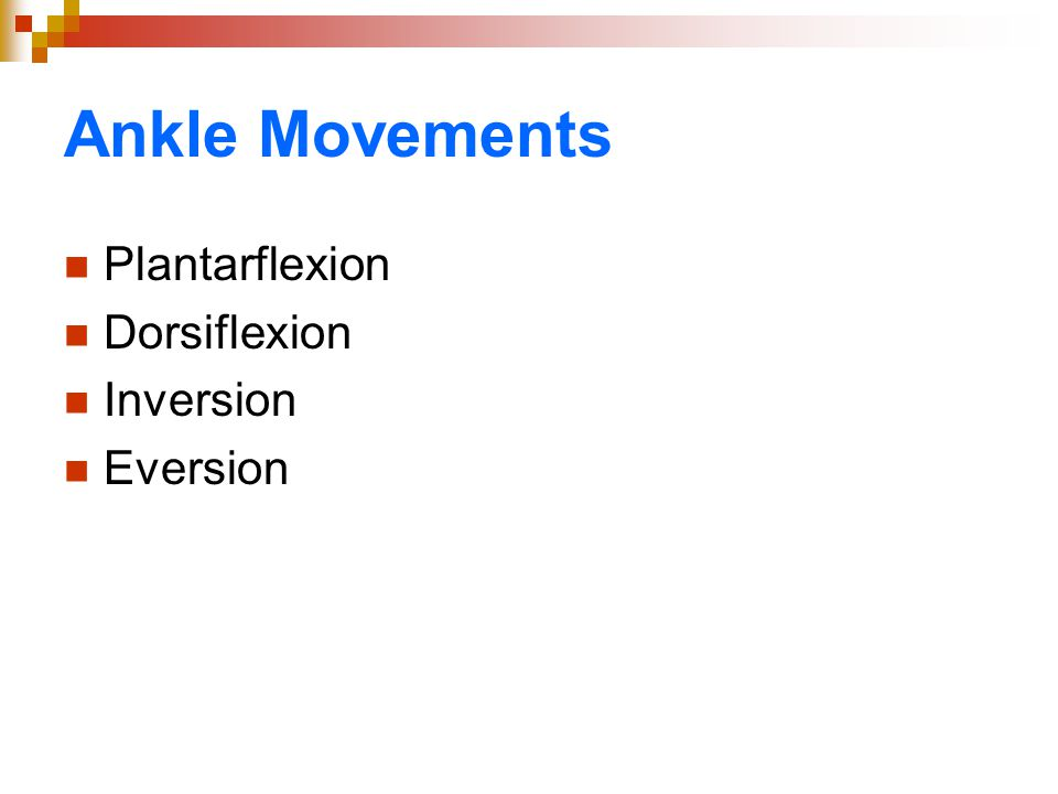 Ankle Movements Plantarflexion Dorsiflexion Inversion Eversion
