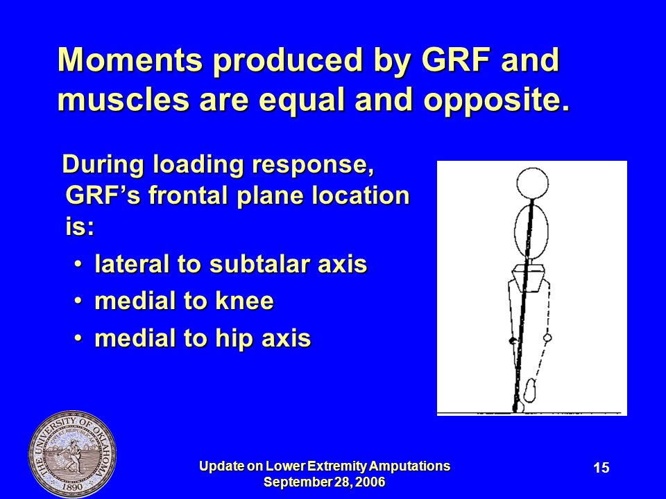 Moments produced by GRF and muscles are equal and opposite.