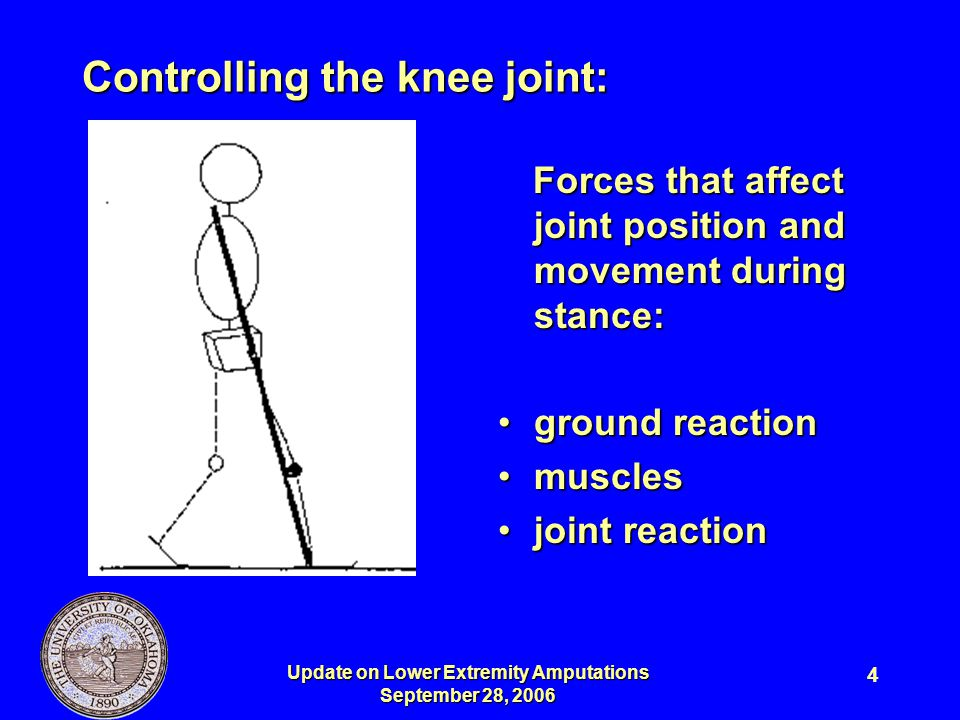 Controlling the knee joint: