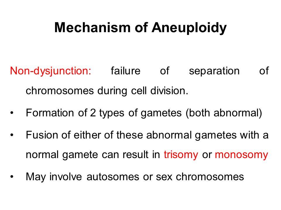 Mechanism of Aneuploidy