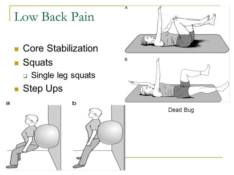 Low Back Pain Core Stabilization Squats Step Ups Single leg squats