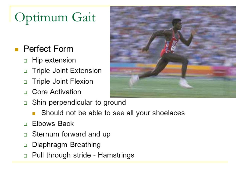 Optimum Gait Perfect Form Hip extension Triple Joint Extension