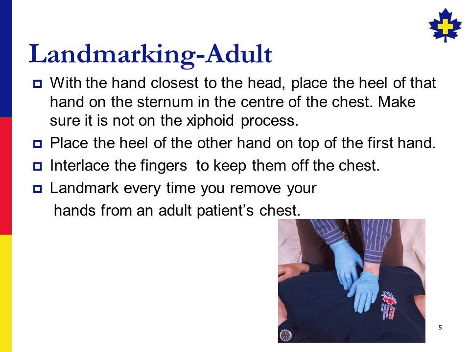 Landmarking-Adult