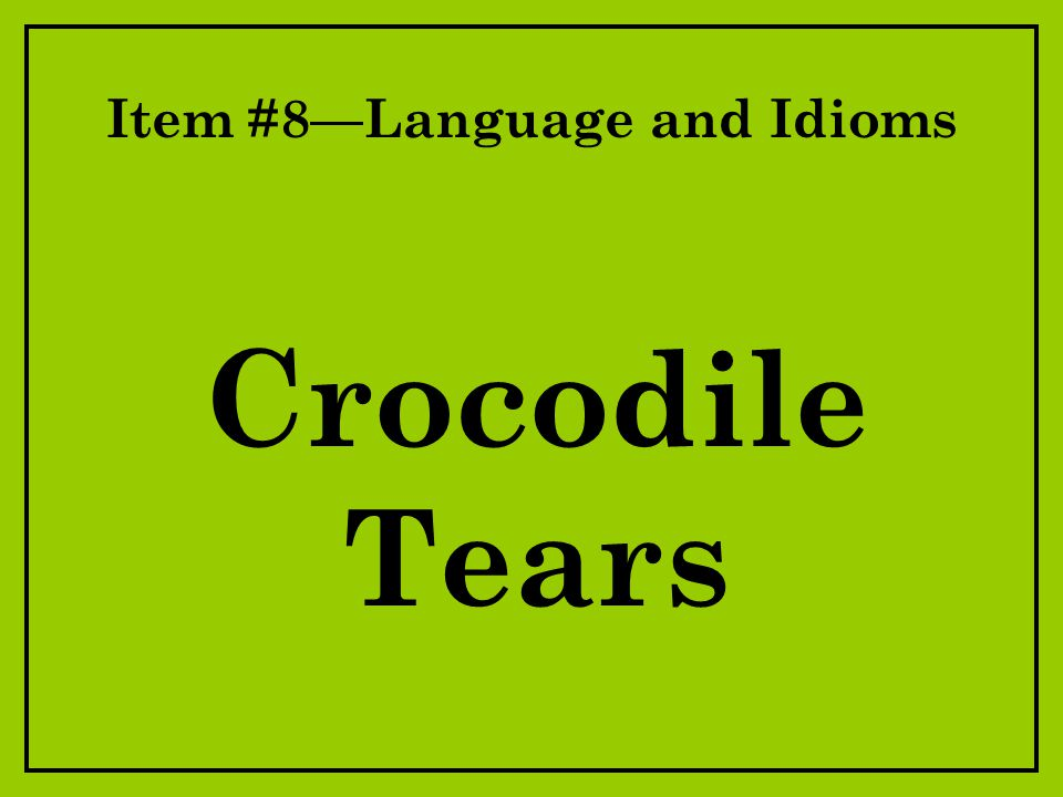 Item #8—Language and Idioms