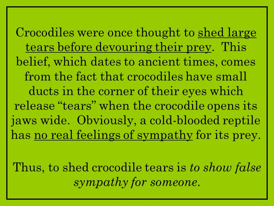 Thus, to shed crocodile tears is to show false sympathy for someone.