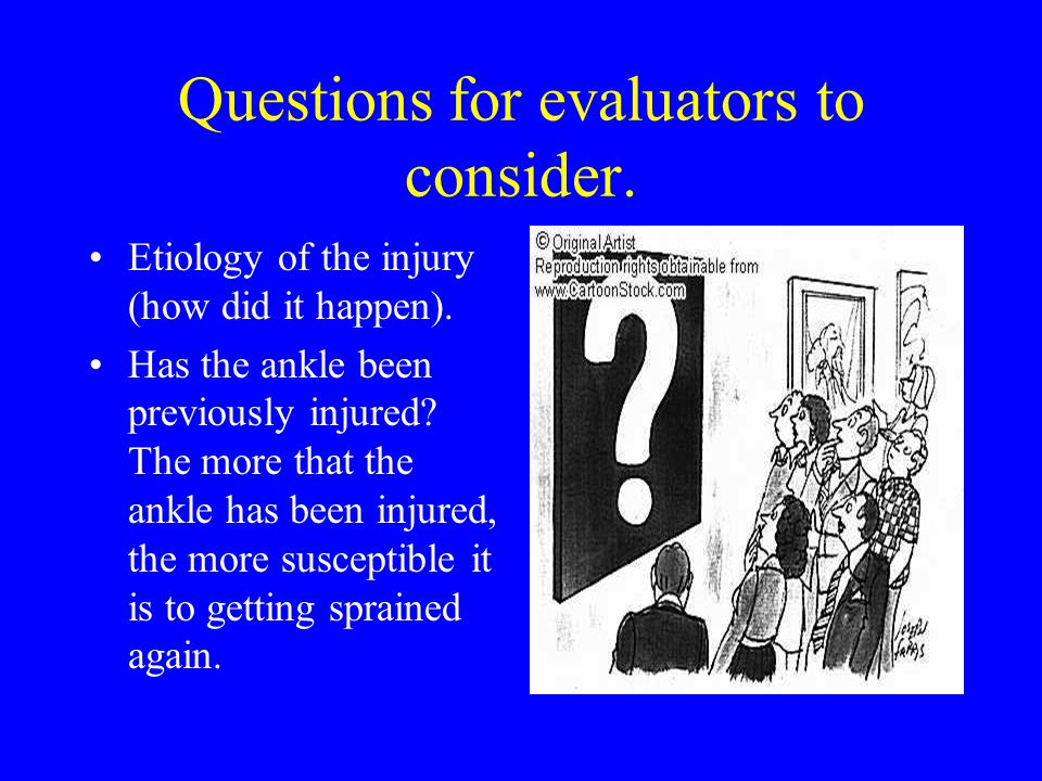 Questions for evaluators to consider.