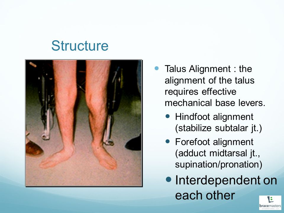 Structure Interdependent on each other