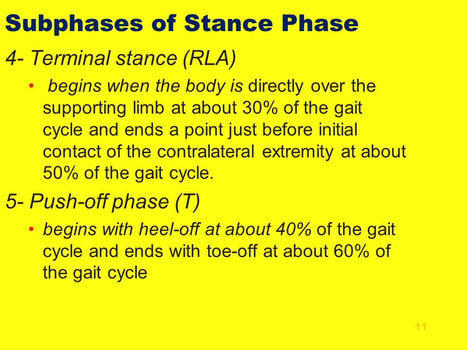 Subphases of Stance Phase