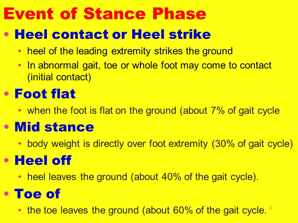 Event of Stance Phase Heel contact or Heel strike Foot flat Mid stance