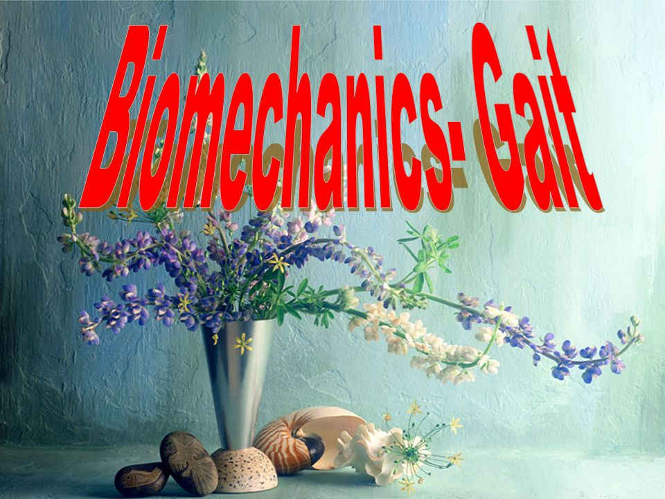 Biomechanics- Gait