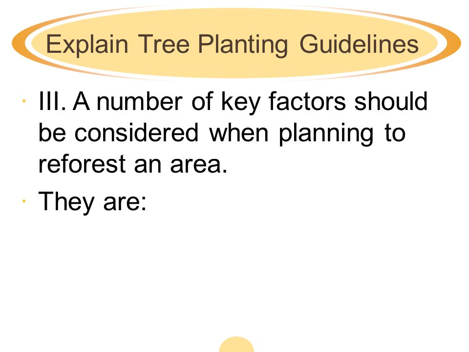 Explain Tree Planting Guidelines