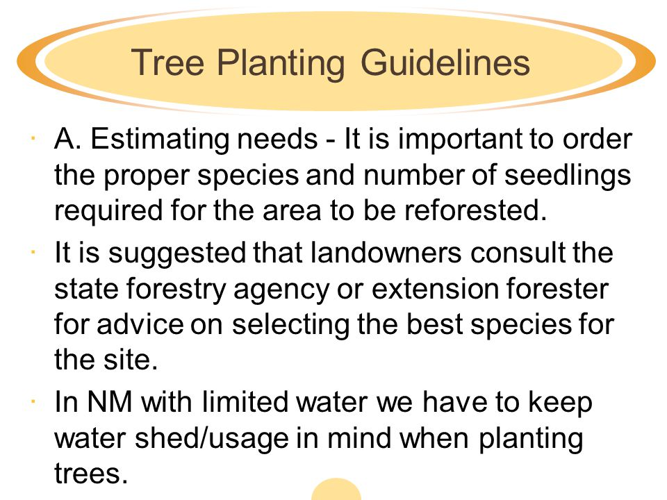 Tree Planting Guidelines
