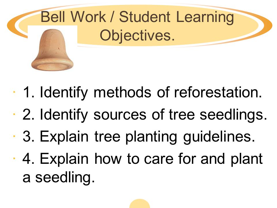 Bell Work / Student Learning Objectives.