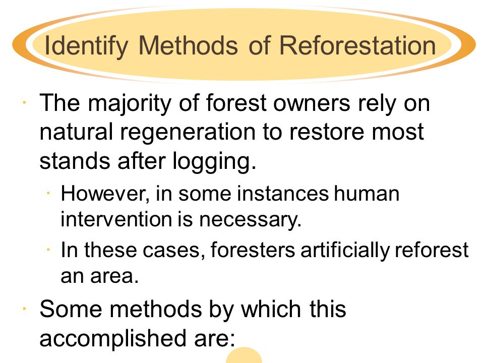 Identify Methods of Reforestation