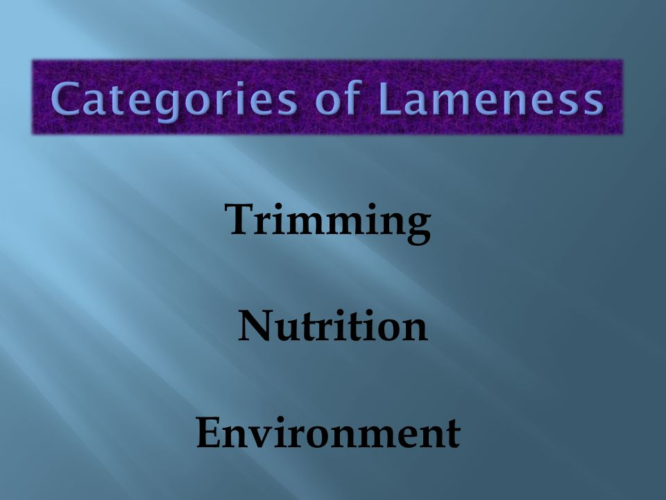 Categories of Lameness