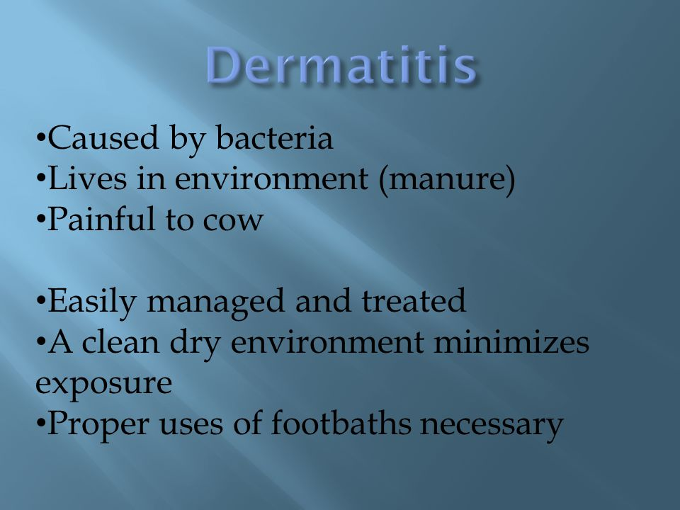 Dermatitis Caused by bacteria Lives in environment (manure)