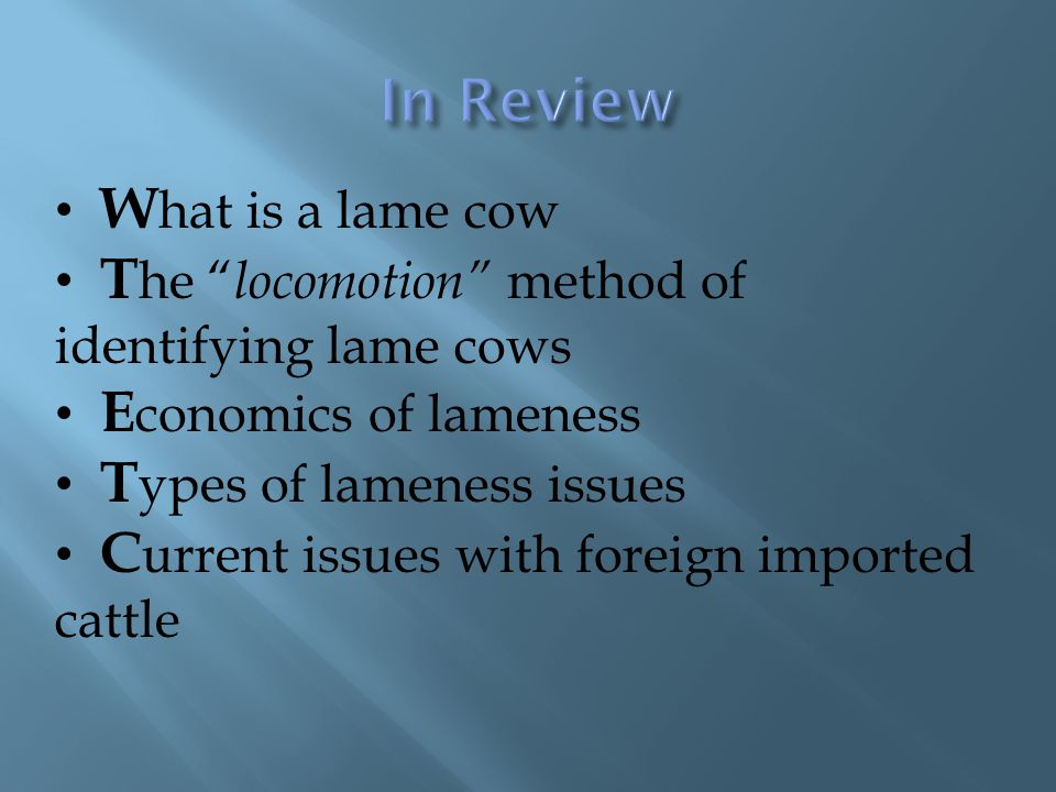 In Review What is a lame cow