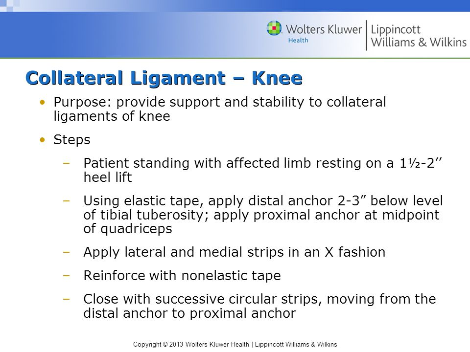 Collateral Ligament – Knee