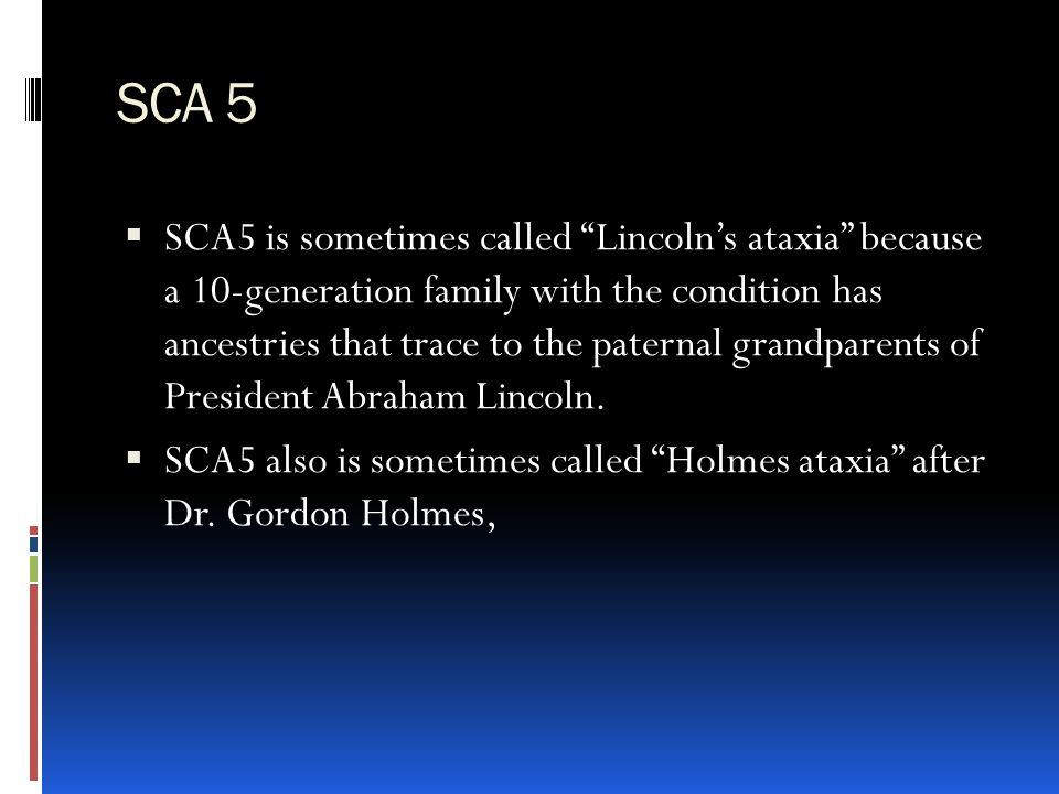 SCA 5