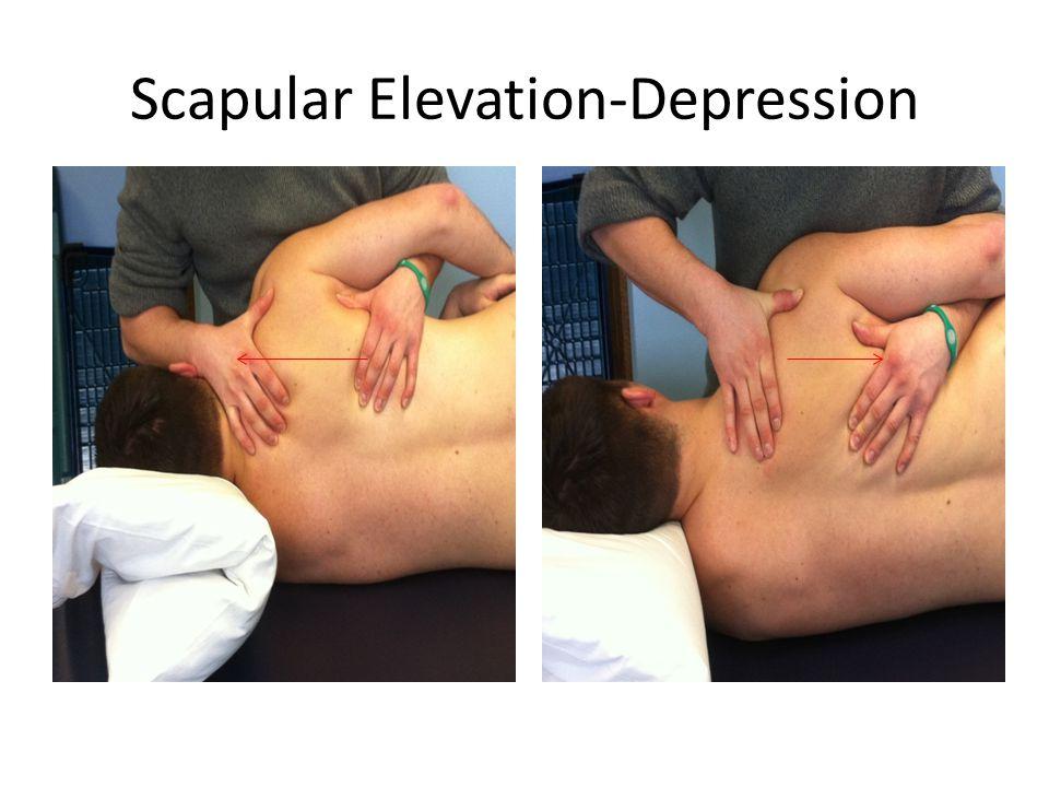 Scapular Elevation-Depression