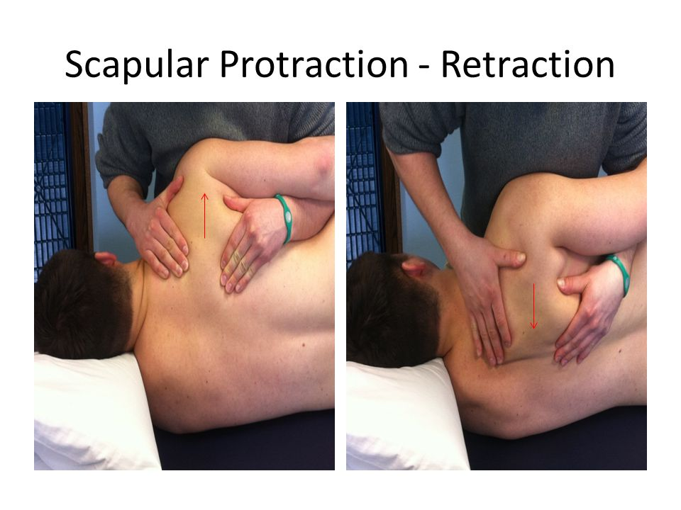 Scapular Protraction - Retraction