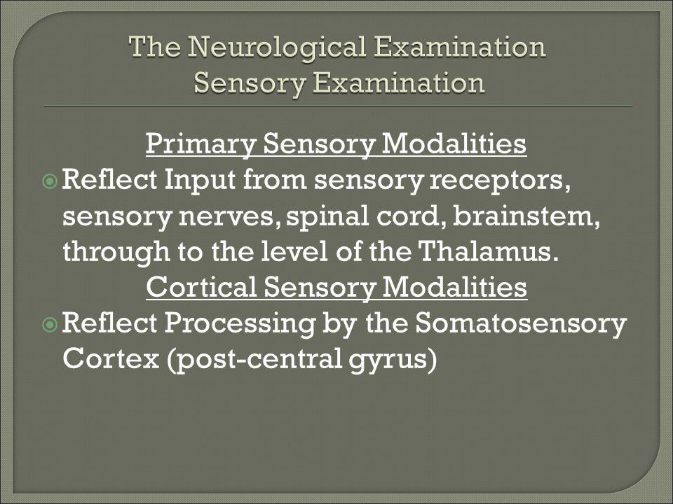 The Neurological Examination Sensory Examination