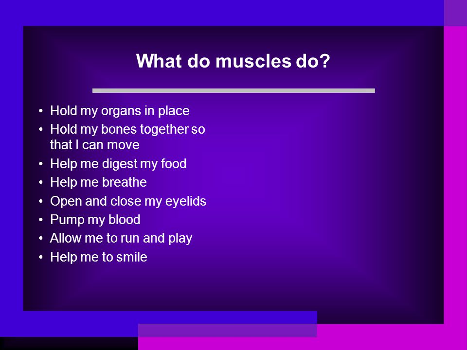 What do muscles do Hold my organs in place