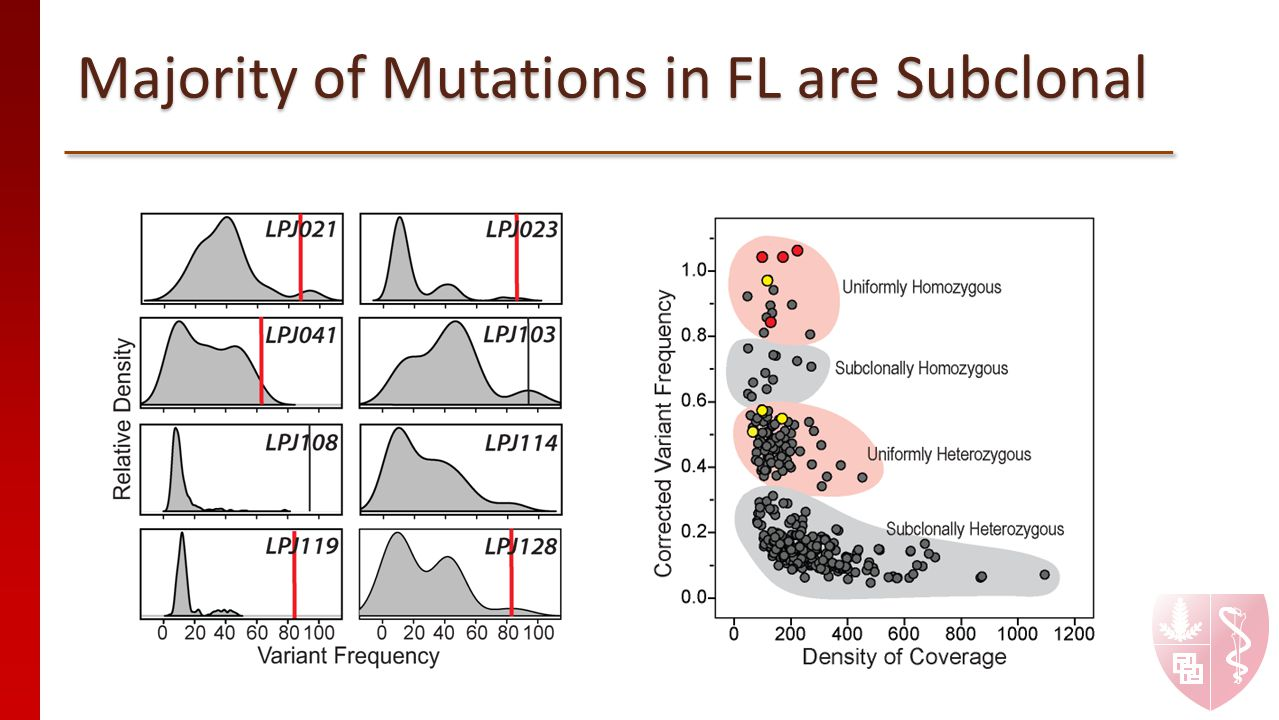 Majority of Mutations in FL are Subclonal