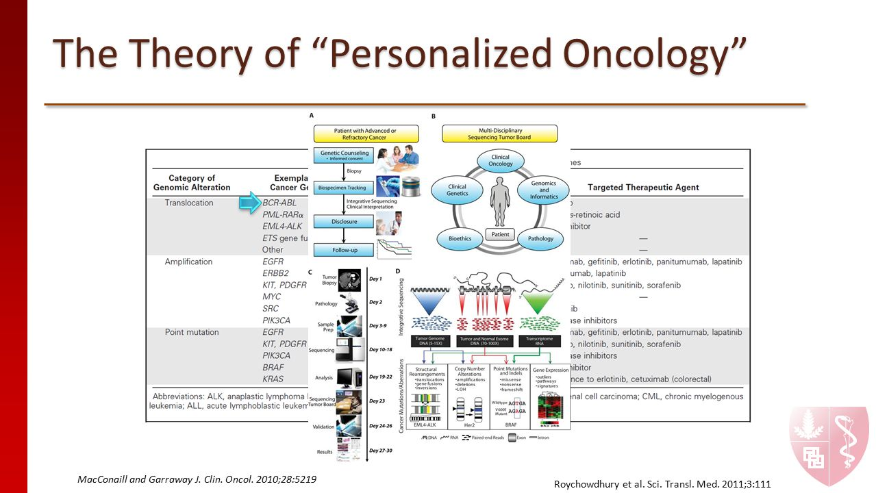 The Theory of Personalized Oncology