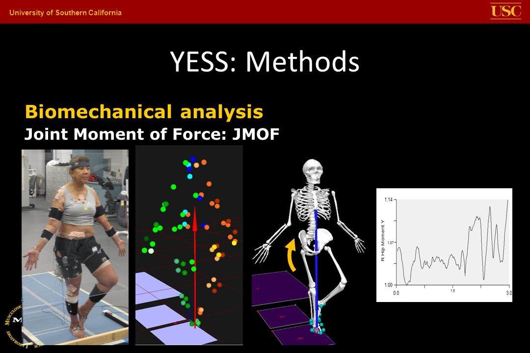 YESS: Methods Biomechanical analysis Joint Moment of Force: JMOF