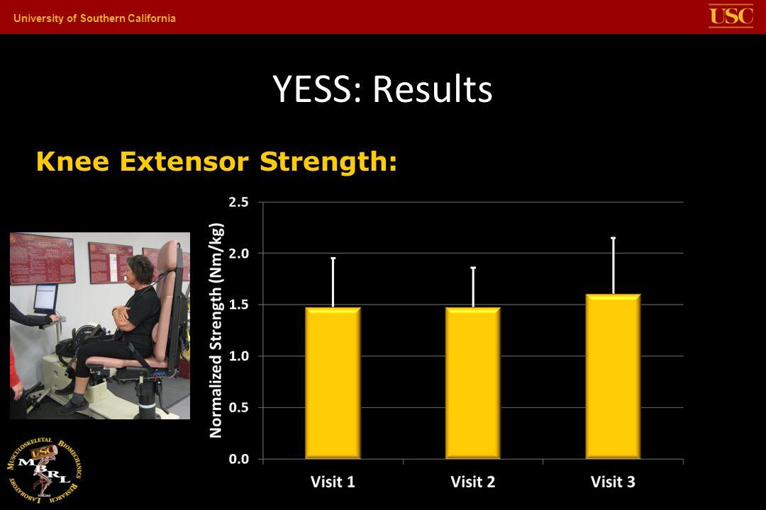 YESS: Results Knee Extensor Strength: