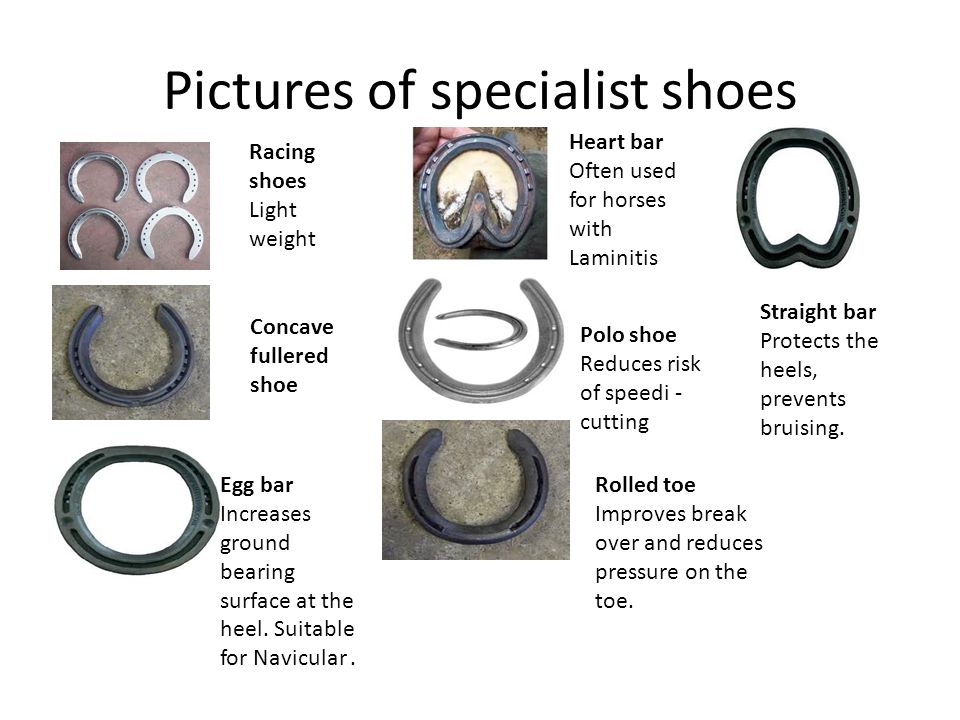 Pictures of specialist shoes