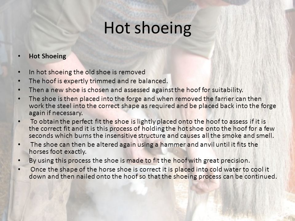 Hot shoeing Hot Shoeing In hot shoeing the old shoe is removed