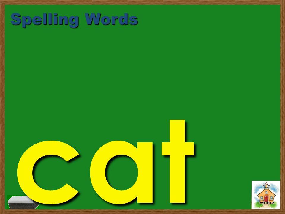 Spelling Words cat