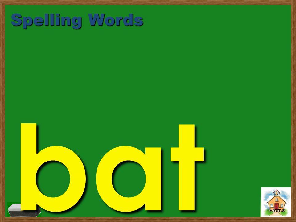 Spelling Words bat