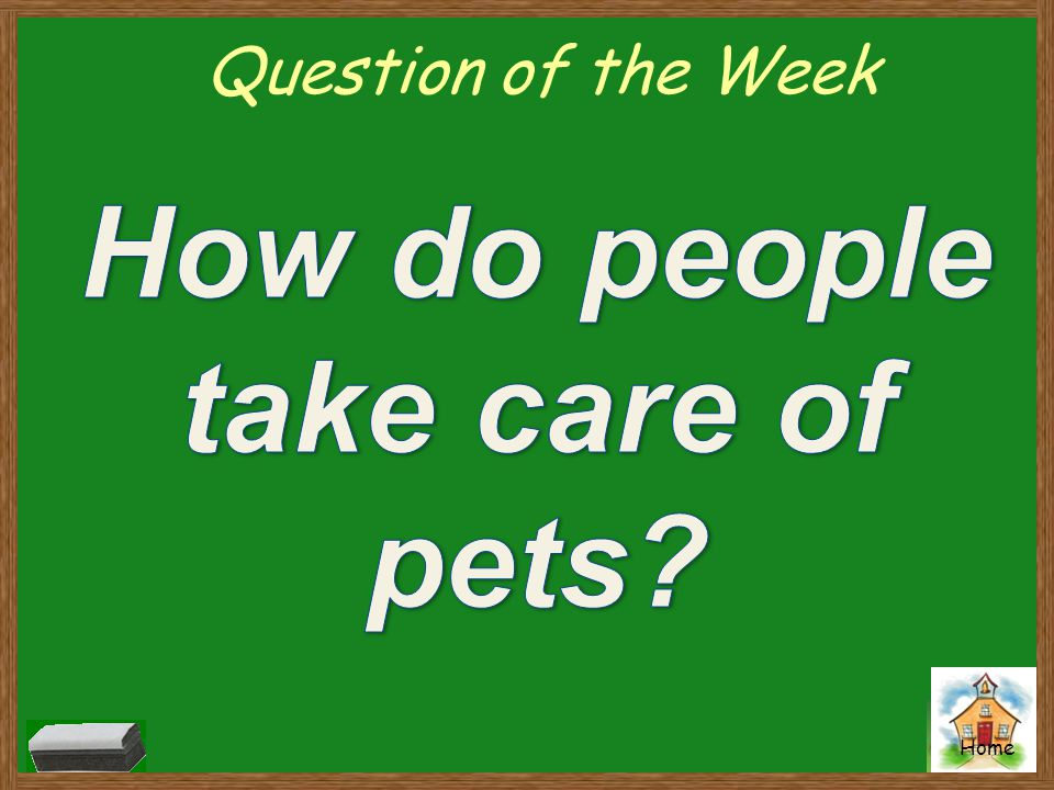 How do people take care of pets