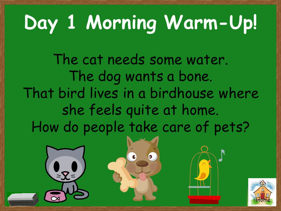 Day 1 Morning Warm-Up! The cat needs some water. The dog wants a bone.