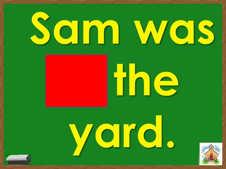 Sam was in the yard.