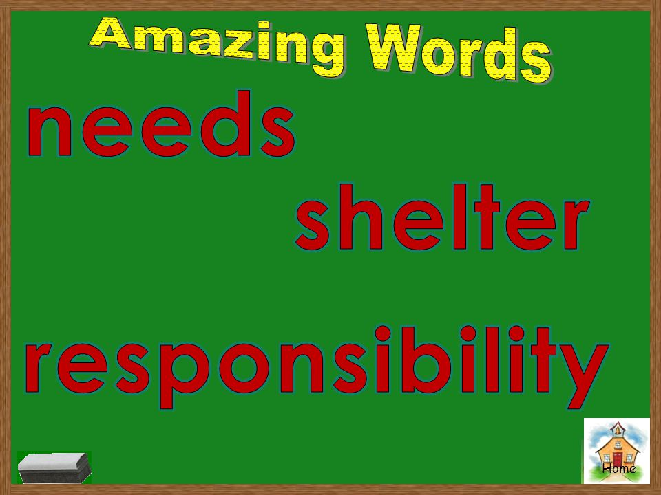 Amazing Words needs shelter responsibility