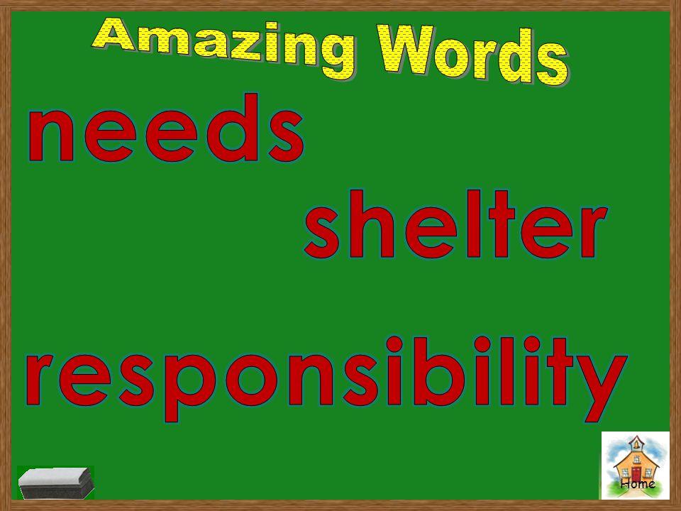 Amazing Words needs shelter responsibility