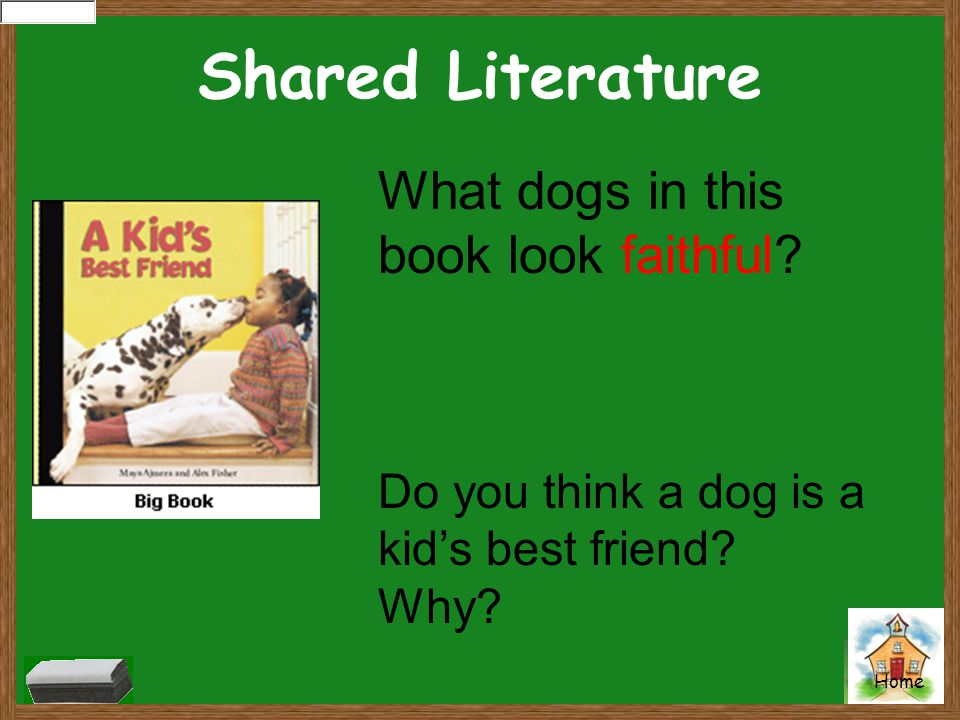 Shared Literature What dogs in this book look faithful