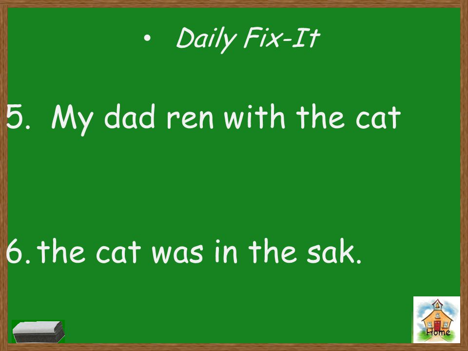 Daily Fix-It 5. My dad ren with the cat the cat was in the sak.