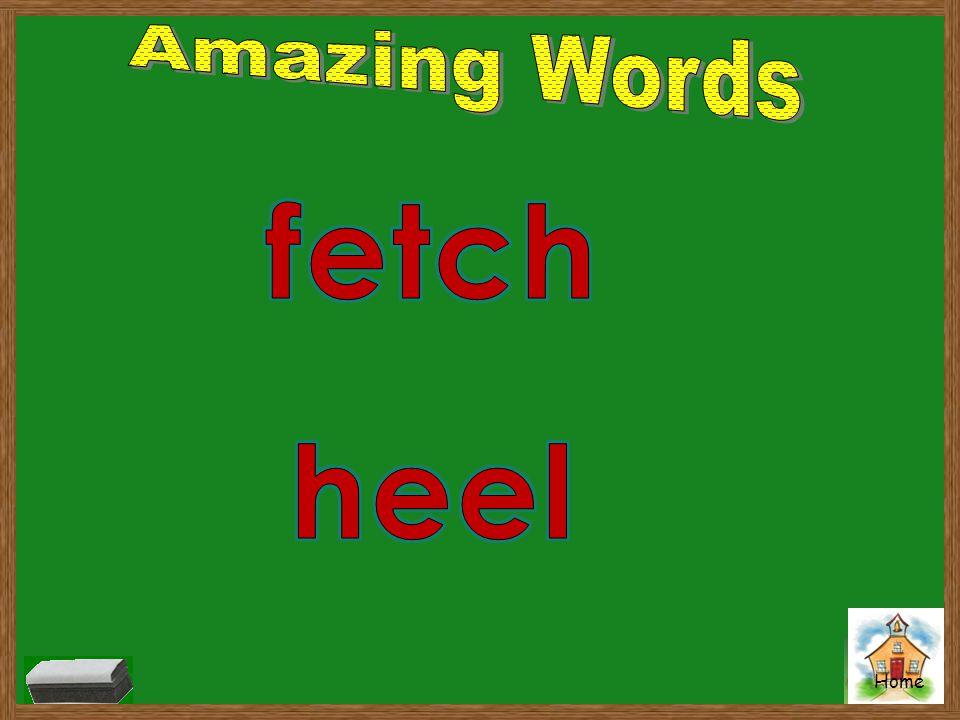Amazing Words fetch heel
