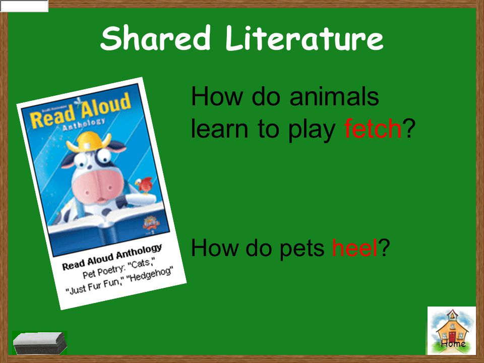 Shared Literature How do animals learn to play fetch